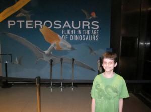 pterosaurs00