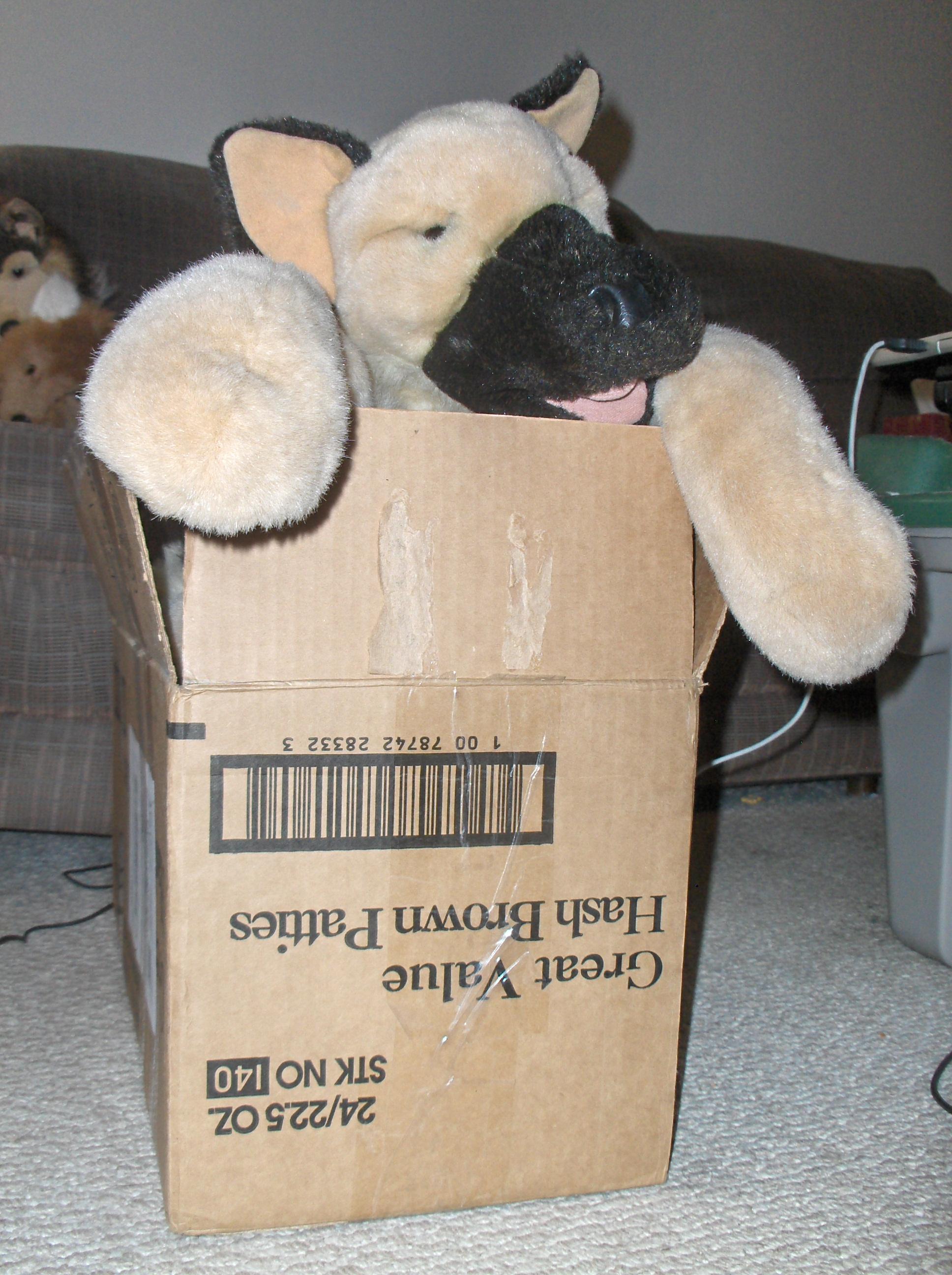 GS-box