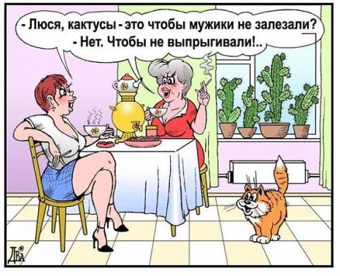 http://ic.pics.livejournal.com/lunin_sovs/22838241/2310082/2310082_600.jpg