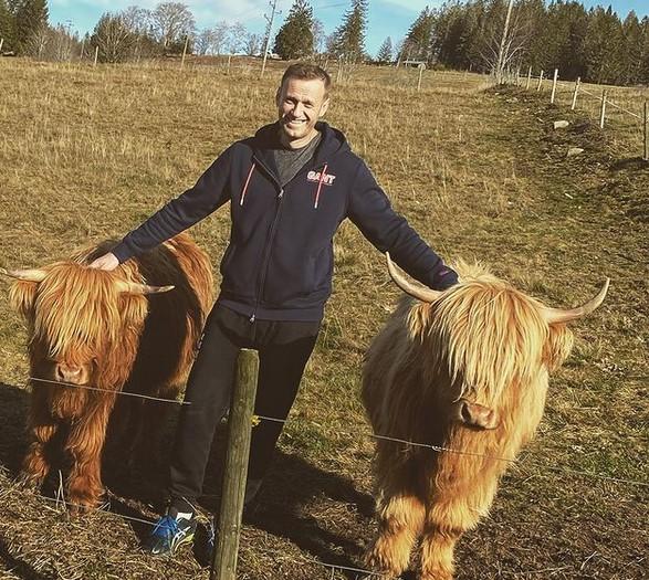 Навальный передумал возвращаться в Россию – блогер попросил продлить его проживание в Германии