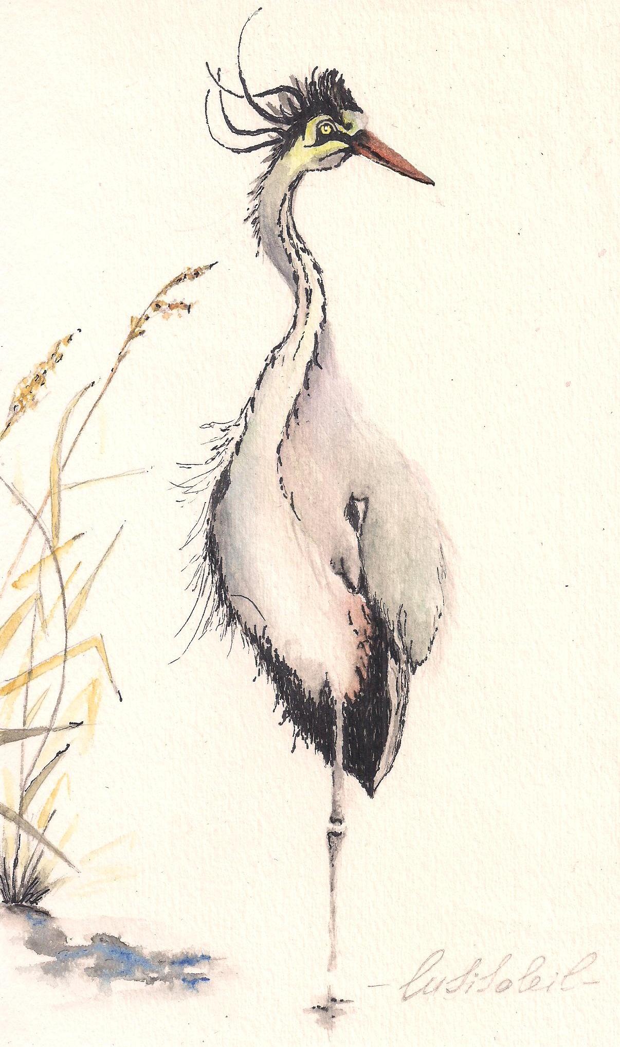 Птица.Бумага.Акварель.*Lusi Soleil*#watercolor#watercolour*Lusi Soleil*#❤люблюмалювати❤люблюакварель❤❤малююзавжди❤#watercolor#watercolour*Lusi Soleil*##watercolor#watercolour*