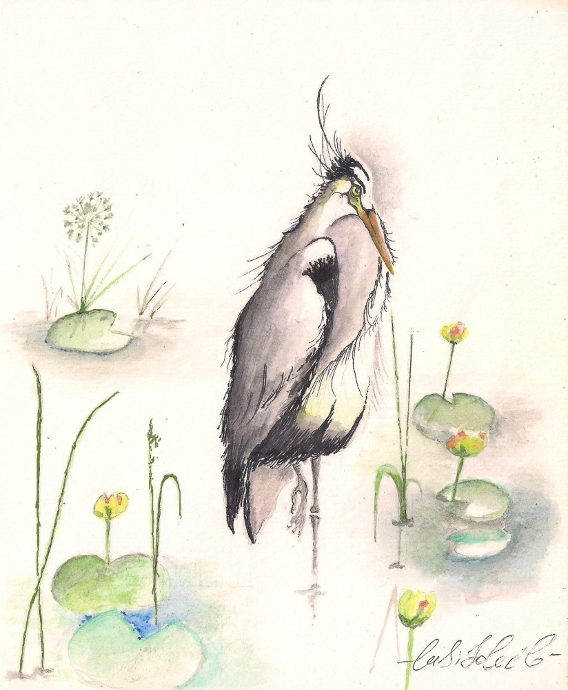 Птица.Бумага.Акварель.*Lusi Soleil*.#watercolor#watercolour*Lusi Soleil*#❤люблюмалювати❤люблюакварель❤❤малююзавжди❤#watercolor#watercolour*Lusi Soleil*##watercolor#watercolour*