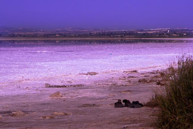 Аликанте розовое озеро ретба