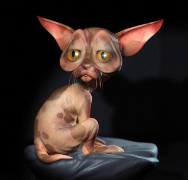 Смешные картинки с кошками сфинксами