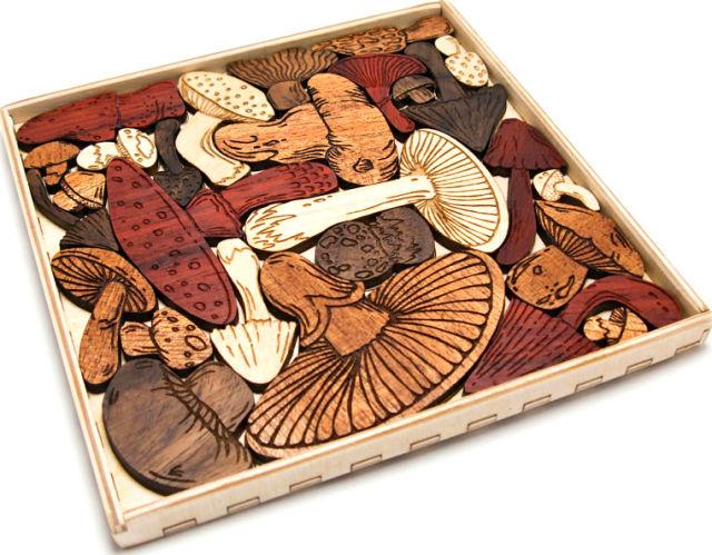 Собирай грибы в любое время года!
