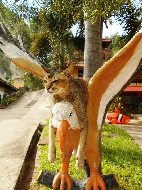 http://ic.pics.livejournal.com/lvoropaeva/12410323/5251136/original.jpg