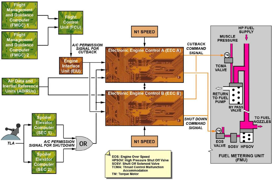 FMU Diagram