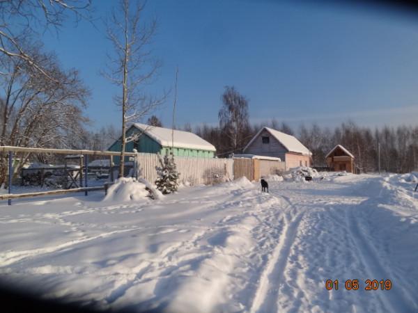 зима 003