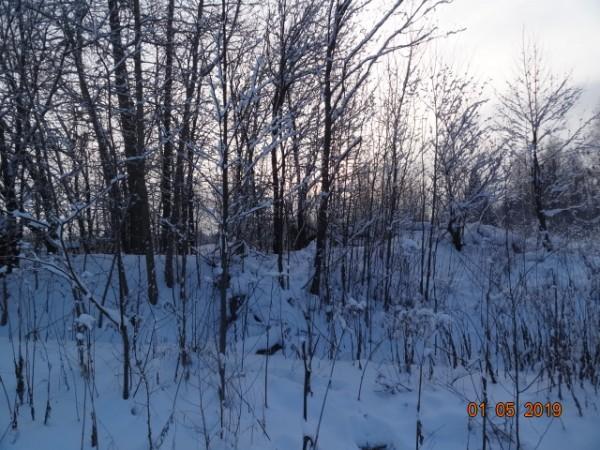 зима 010