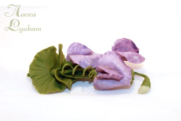 горошек-сиреневый-2