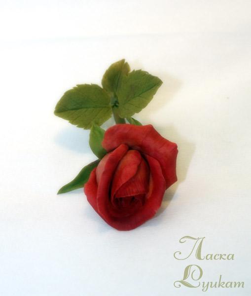 роза-красная-ветка1
