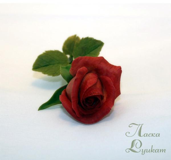 роза-красная-ветка5