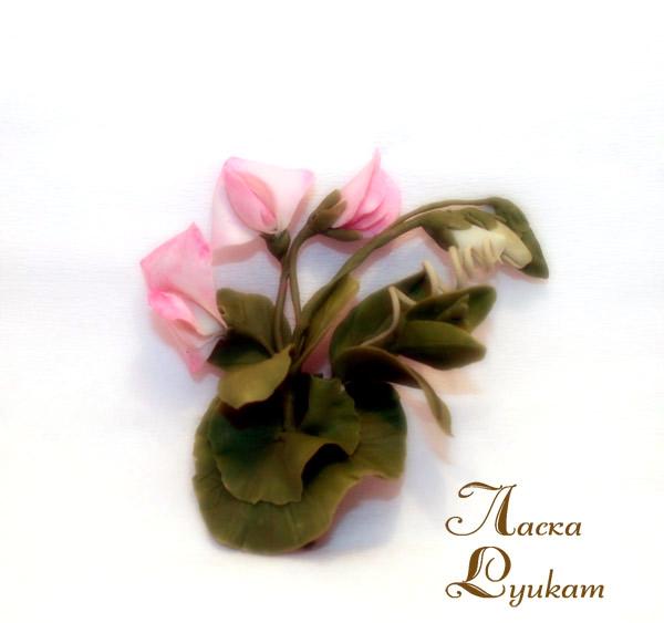 горошек-розовый-5