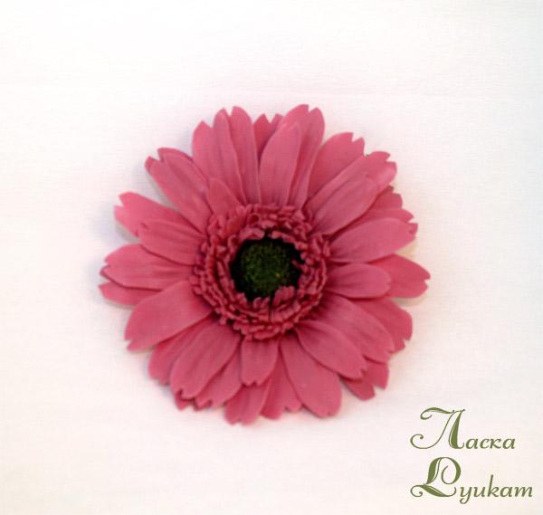 гербера-розовая