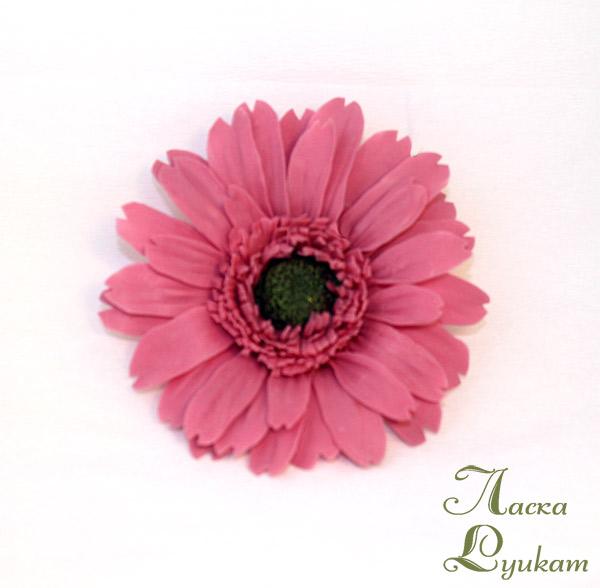 гербера-розовая1