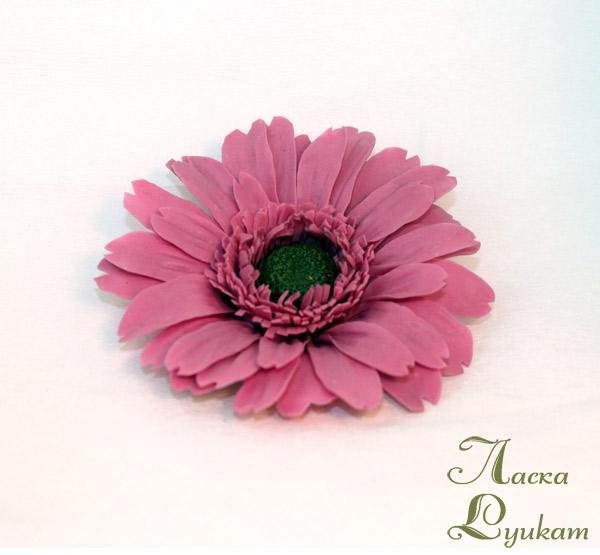 гербера-розовая-2