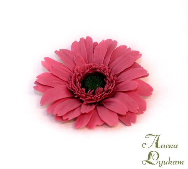 гербера-розовая--3