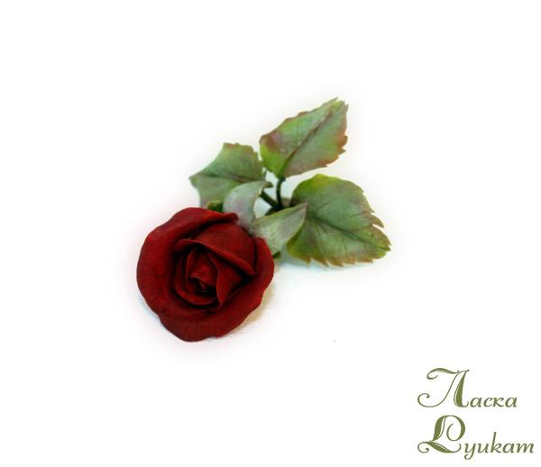 роза-красная1