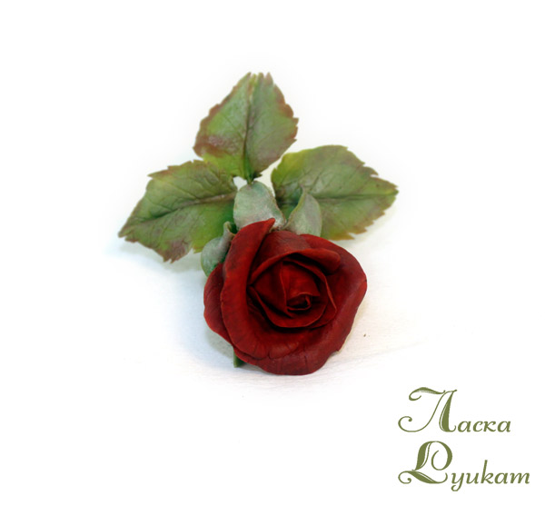 роза-красная2