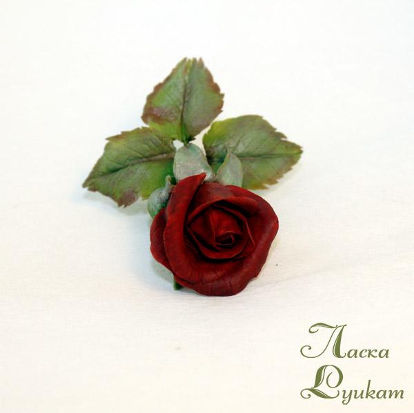 роза-красная3