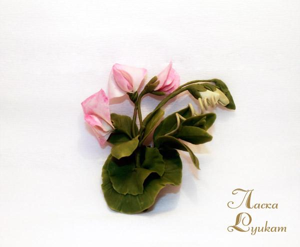 горошек-розовый3