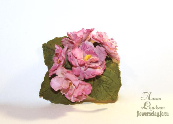 фиалки-розовые-1