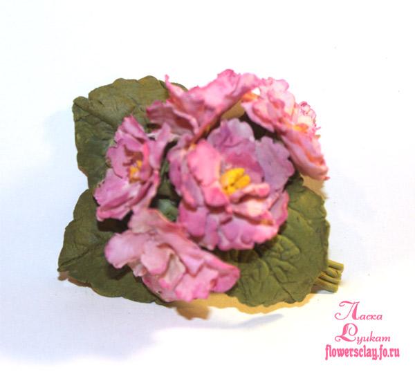 фиалки-розовые-3