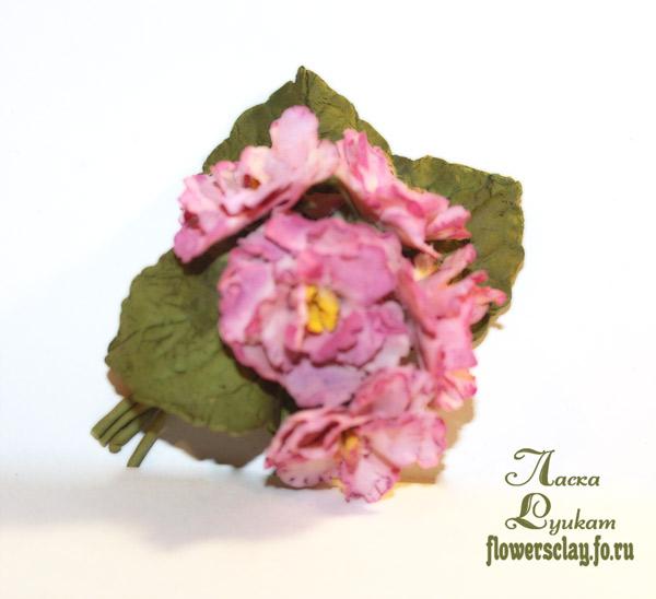 фиалки-розовые-4