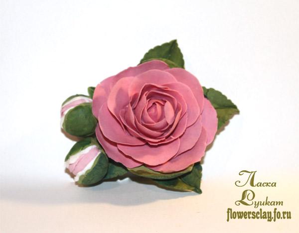 японский-чай-розовый5