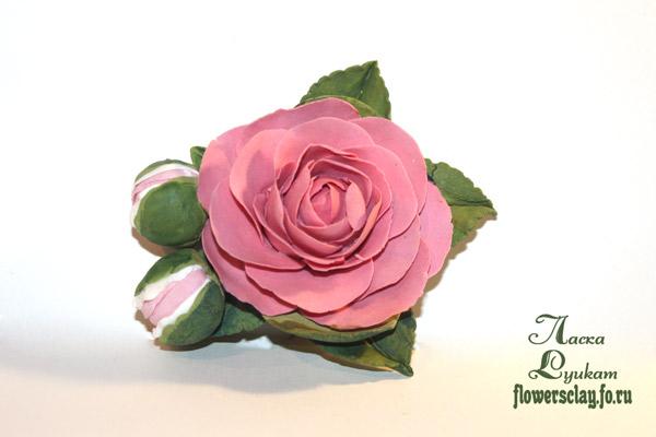 японский-чай-розовый2