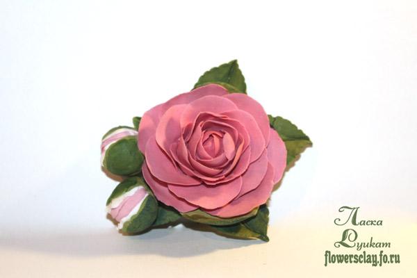 японский-чай-розовый3