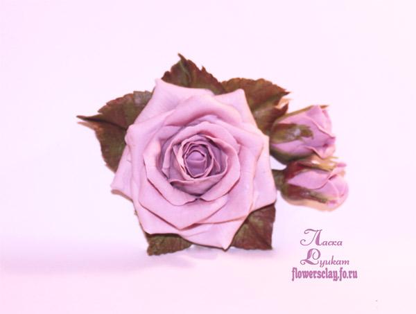 розы-сиреневые-2