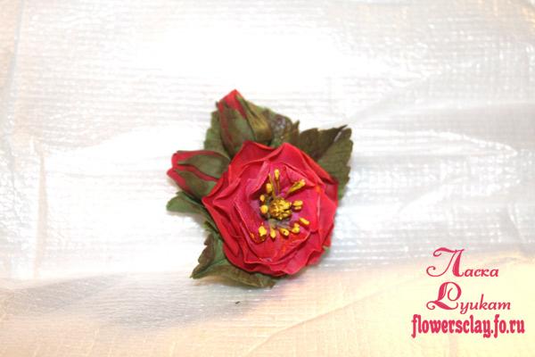 роза-вьющаяяся--зажим1