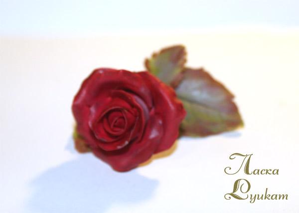роза-красная-цветком-1