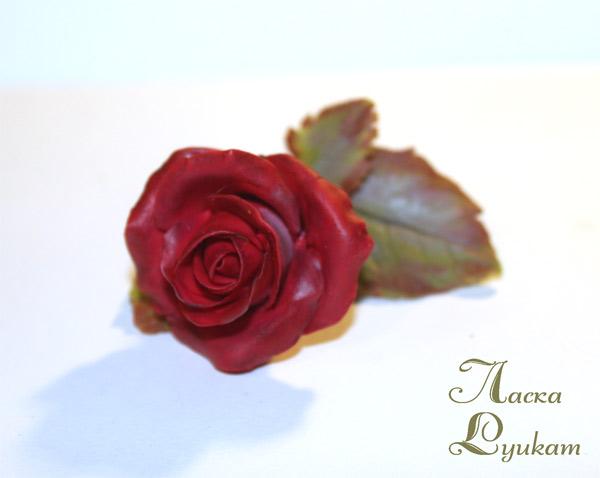 роза-красная-цветком-2