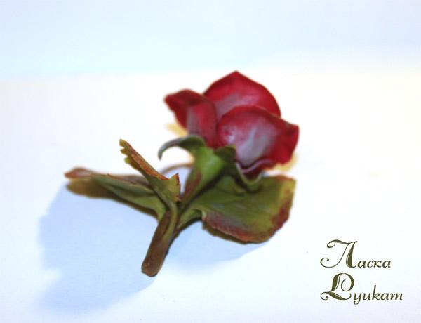 роза-красная-цветком-3