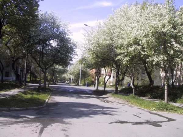 улица Пушкина 04