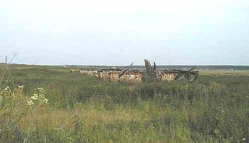 Караболка ферма