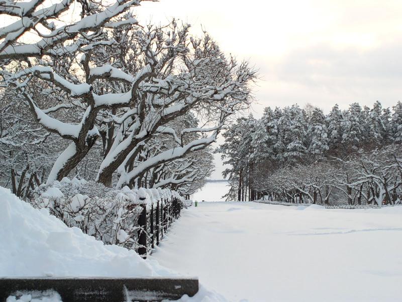 Снежинск зимой