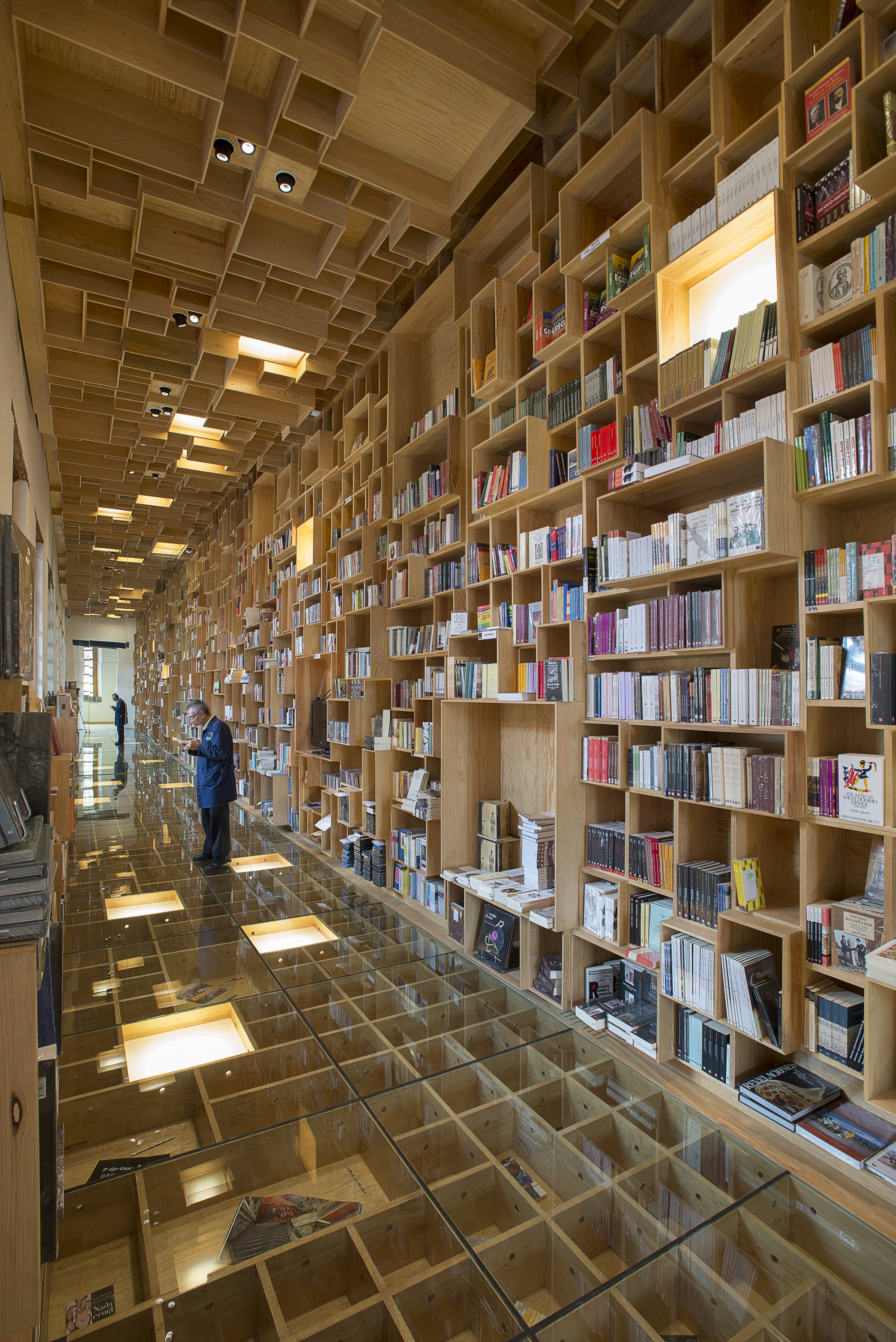 52e83b6ae8e44ea663000024_-the-city-of-the-books-and-the-images-taller-6a_dsc_13441