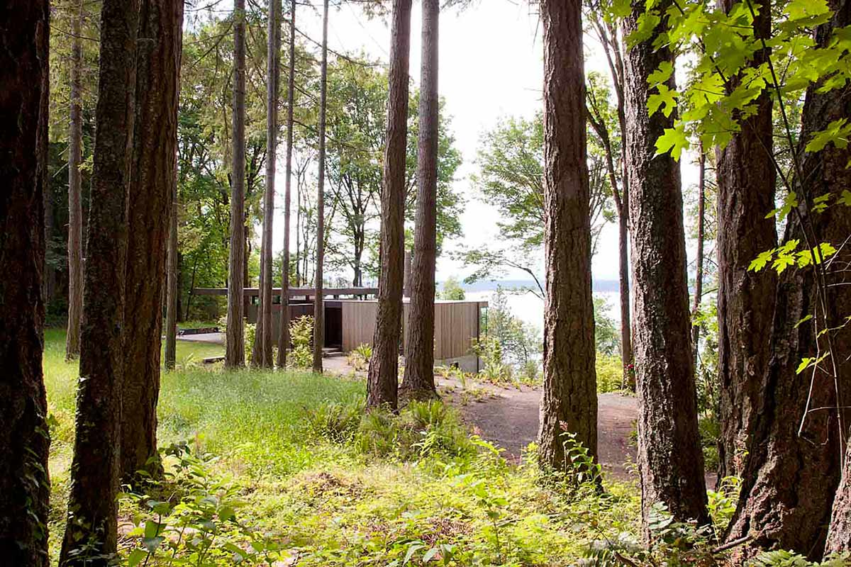 Case-Inlet-Home-Woods