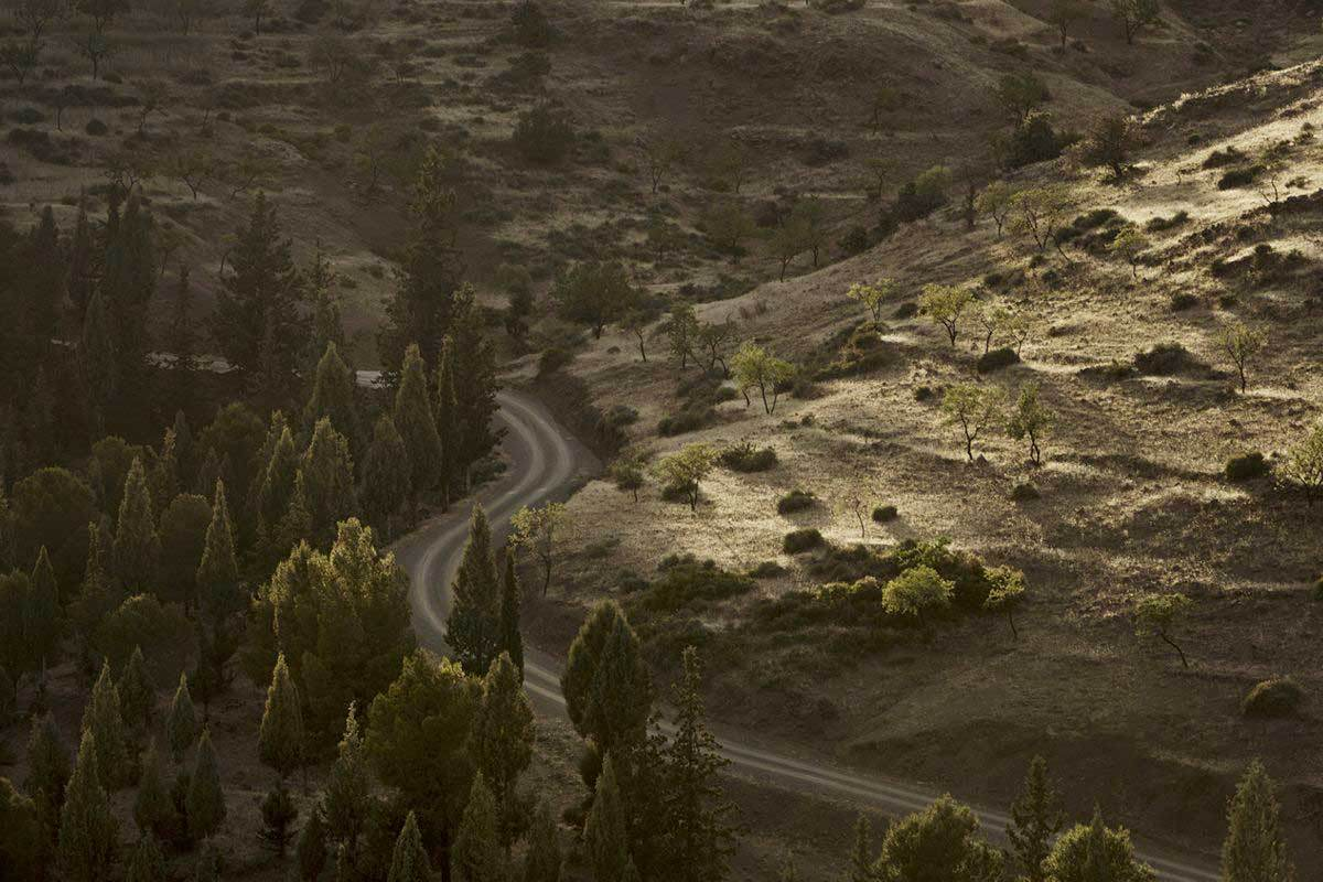 Villa-E-by-Studio-Ko-in-Morocco-Yellowtrace-18