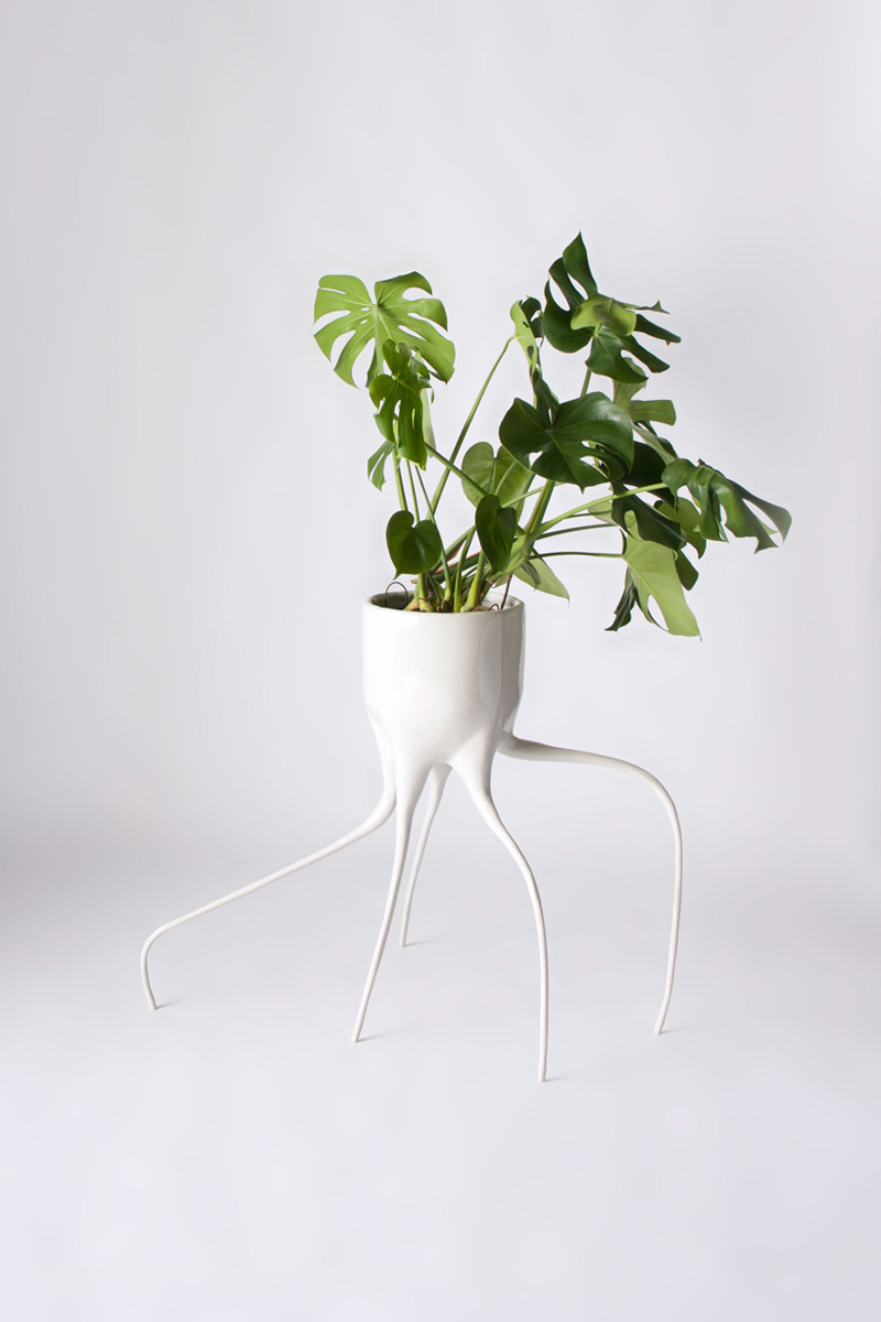 monstera_pots_tim_de_weerd_02