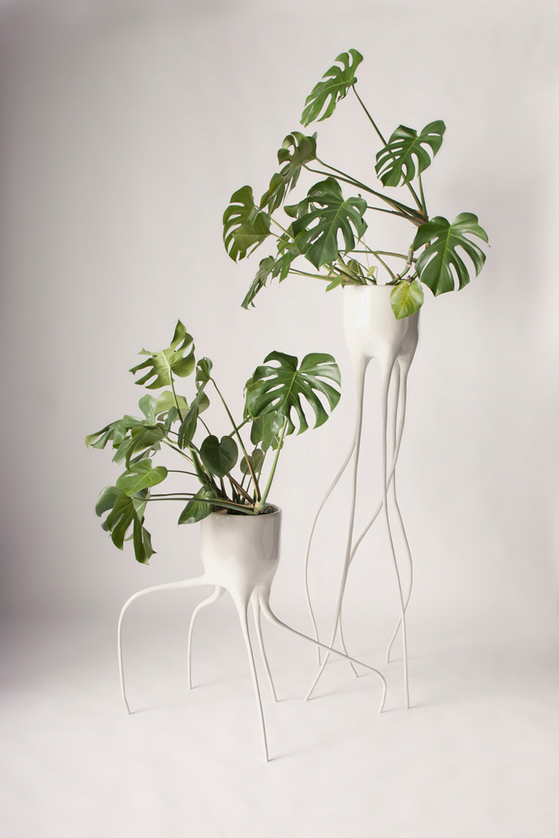 monstera_pots_tim_de_weerd_05 (1)