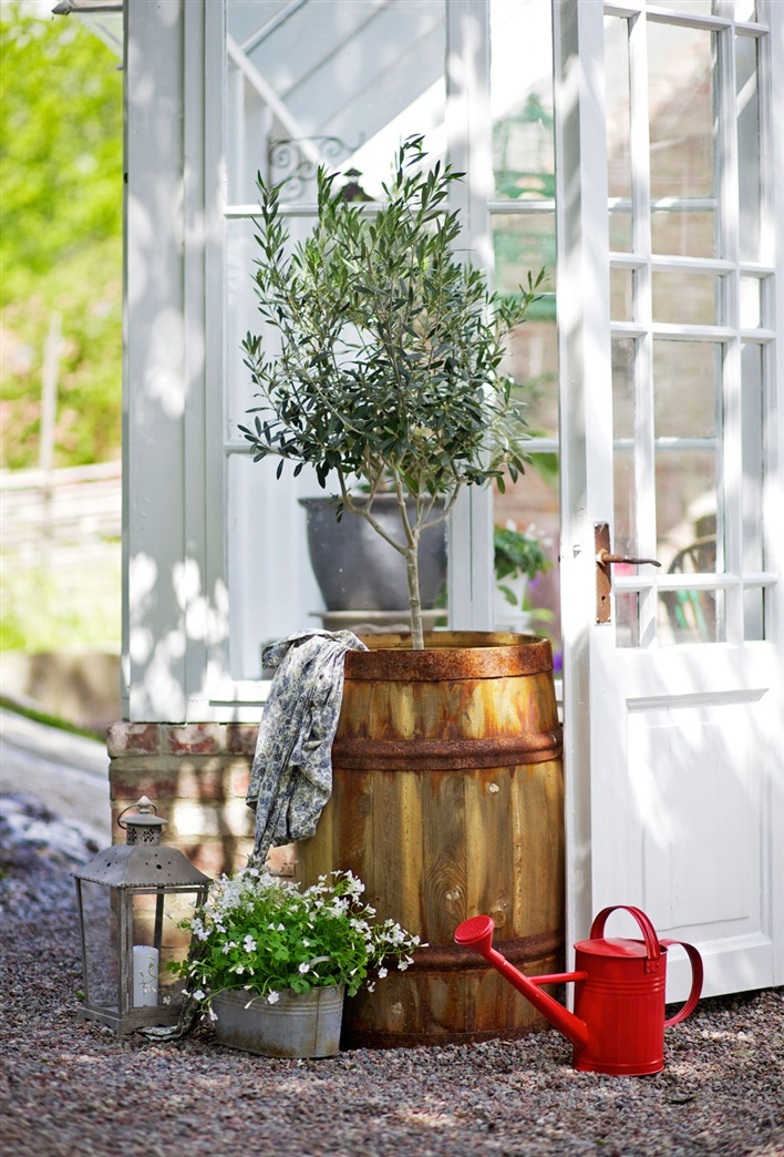 miss-design.com-interior-garden-greenhouse-summer-swedish-2