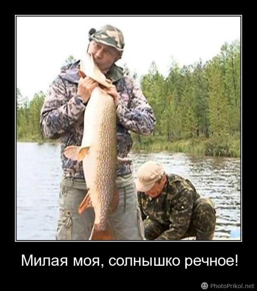 стих про путина как на рыбалку