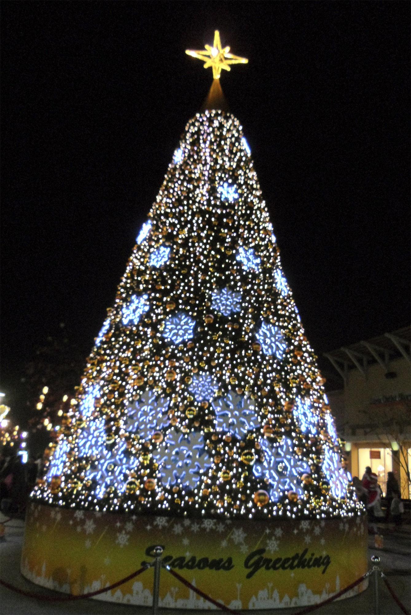 Корея, Новогодние елки