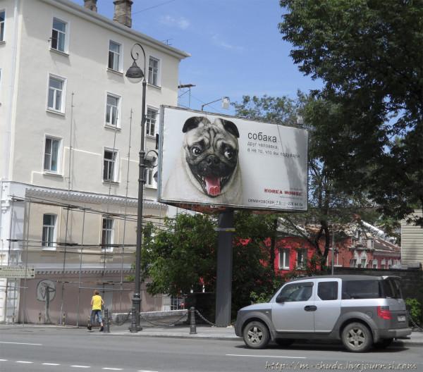 СобакаДругЧеловека