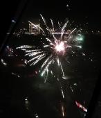 16_Новый_год_cat_