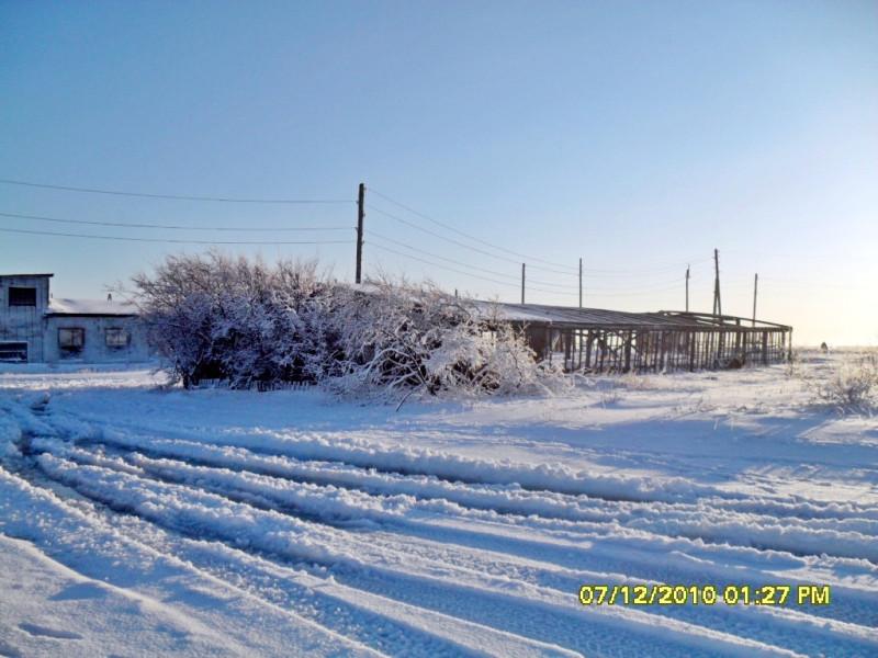 Пахачи Камчатка зима 2010 теплица снег